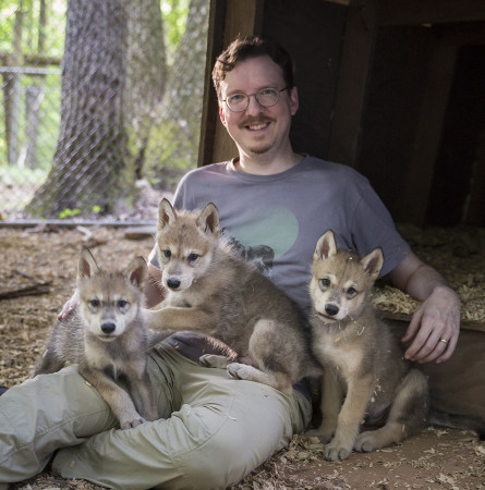 Jay with Wolf Puppies
