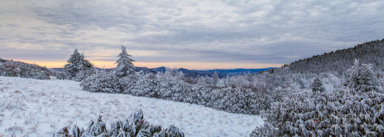 Roan Mountain Sunrise in the Snow