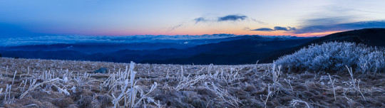 Roan Mountain Winter Sunrise