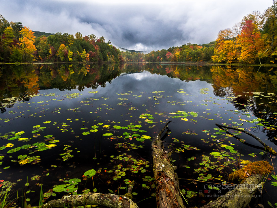 Bays Mountain Reservoir, Fall 2014