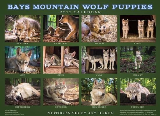 WolfPup-Calendar2015-back