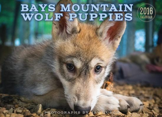 WolfPup-Calendar2015
