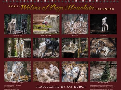 2021 Wolf Calendar (back)