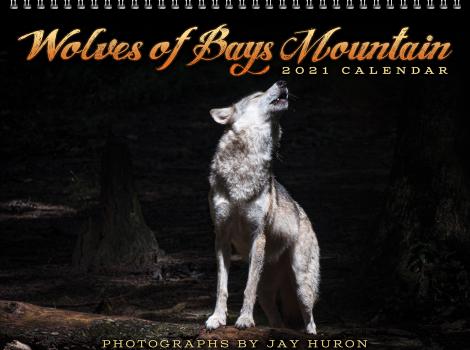 2021 Wolf Calendar