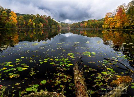 Fall at Bays Mountain Lake